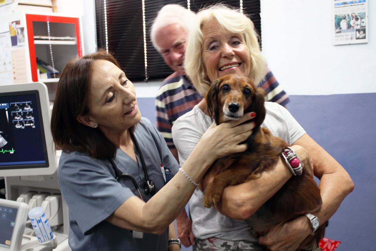 La veterinaria cardiou0301loga Mu00aa Josefa Fernau0301ndez del Palacio, junto a Tessa en la consulta del servicio de Cardiorrespiratorio del Hospital Veterinario UMU