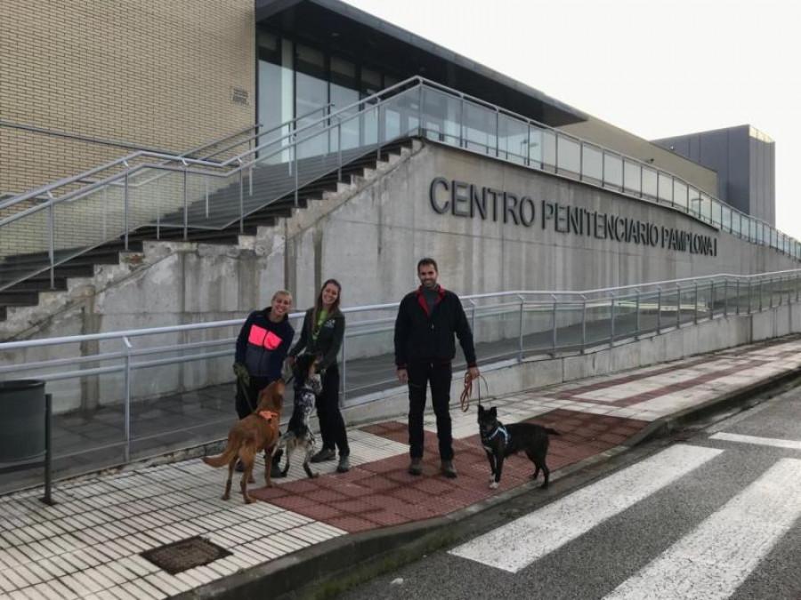 Terapia Con Perros Para Los Presos De Pamplona