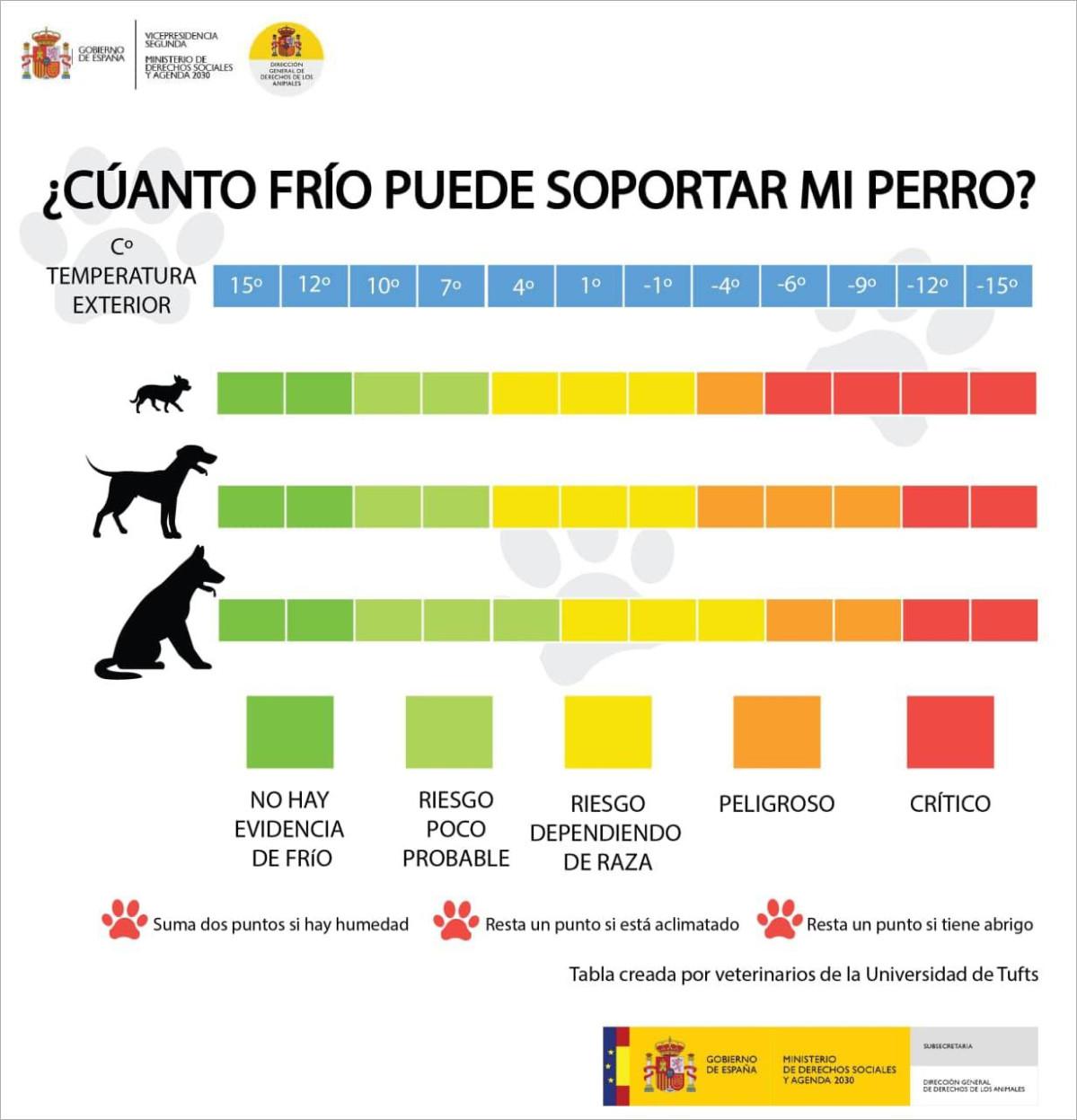 Linea cuanto frio puede soportar perro infografia dchos animales